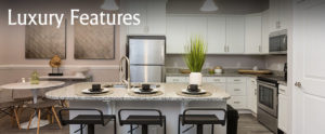 Luxury Chester Apartment Kitchen