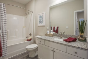 Chester Apartment Bathroom