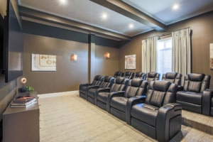 Rivington Apartment Movie Theater