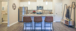 Chester Luxury Apartment Kitchen at The Reserve at Rivington