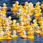 Great Appomattox River Duck Race & Festival