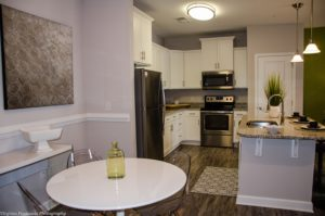Chester Apartment Kitchen